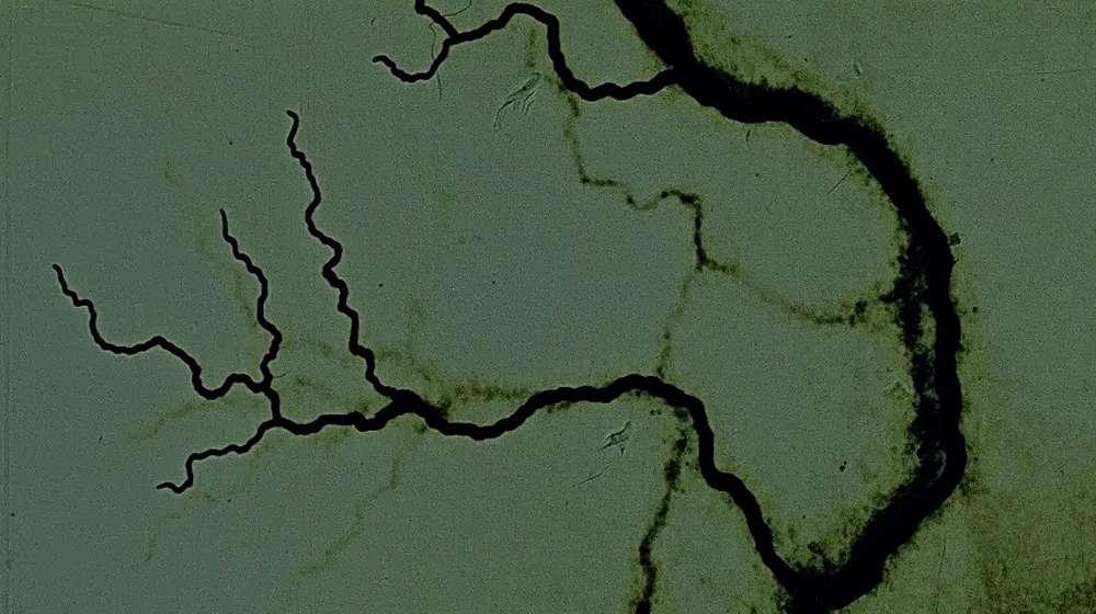 The Dead Sea Scrolls by Steven Woloshen